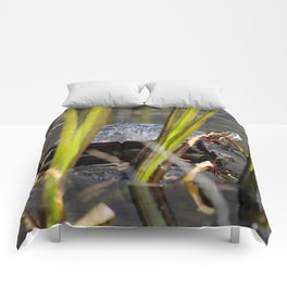 Painted Turtle Comforters