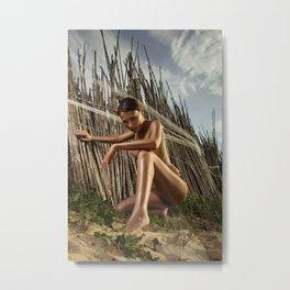 picket fences (nude) Metal Print
