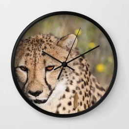 Cheeta Head looking Wall Clock