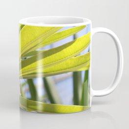 Light Coming Through Coffee Mug