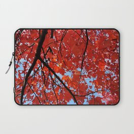 Red Maple Leaves Laptop Sleeve