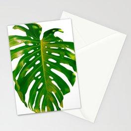 Guatemala - Monstera Deliciosa Leaf Stationery Cards