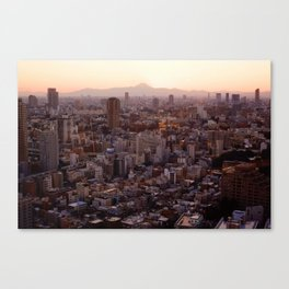 The View of Mt Fuji from the Top of Tokyo Tower Canvas Print