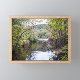 River of the Woodlands 03 Framed Mini Art Print