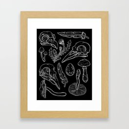 Psilocybe birds Framed Art Print