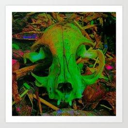 Cat Skull Art Print