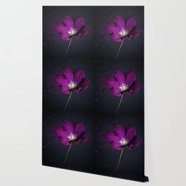 Clematis Explosion Wallpaper