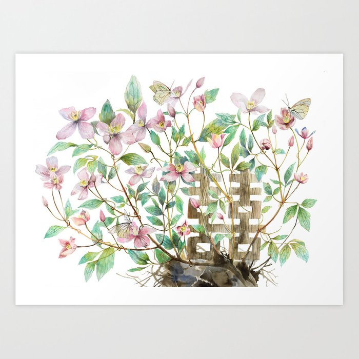 Clematis And Happiness In Marriage Symbol In A Nest Art Print By