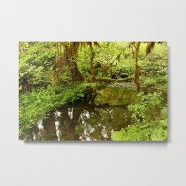 Rainforest Reflection Metal Print