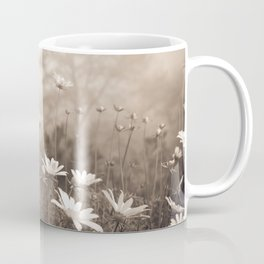 Daisies in the Fog, Guy Fleming Trail, Torrey Pines Coffee Mug