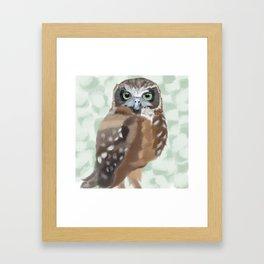 Green Eyed Owl Framed Art Print