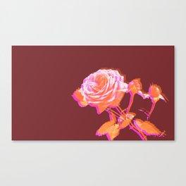 Roses_Burgundy Canvas Print