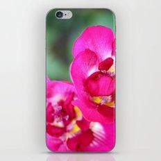 pretty pink flowers. iPhone & iPod Skin