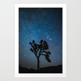 Joshua Tree Night Sky Astrophotography Art Print