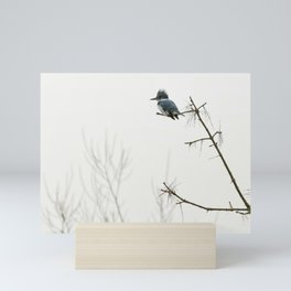 Belted Kingfisher Looking for Prey on a Foggy Day Mini Art Print