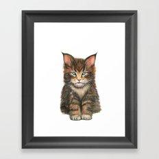 Little Kitten II Framed Art Print