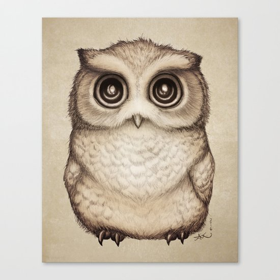 """""""The Little Owl"""" by Amber Marine ~ Graphite & Ink Illustration, (c) 2016 Canvas Print"""