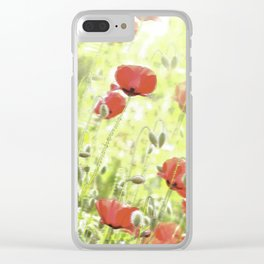 Poppies in the bright sunshine Clear iPhone Case