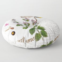 Cottage Style Thyme, Bumble Bee, Hummingbird, Herbal Botanical Illustration Floor Pillow
