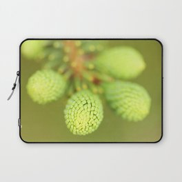 New Growth - Spruce Tree Laptop Sleeve