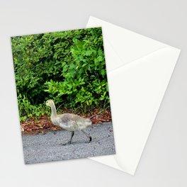 Three Goslings Stationery Cards