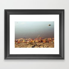 Autumn by the water Framed Art Print