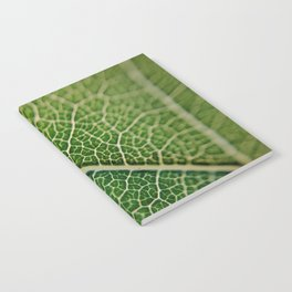 Veins of a leaf Notebook