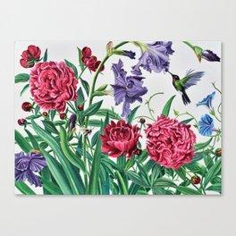 Iris and peonies Canvas Print