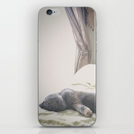 Beautiful gray Scottish Fold cat relaxing on a bed iPhone Skin