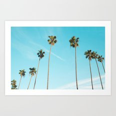 Palm Tree Sunshine Art Print