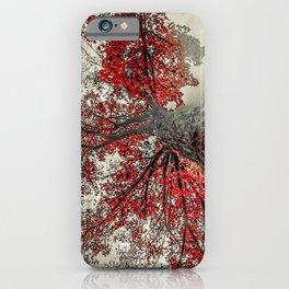 Widen iPhone Case