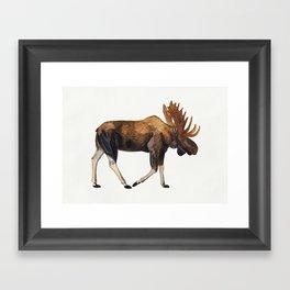 Watercolour Moose Drawing Framed Art Print