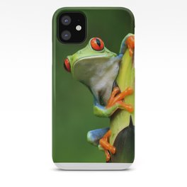 Curious Red-Eyed Tree Frog iPhone Case
