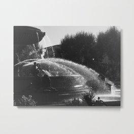 la fontaine de jouvence Metal Print