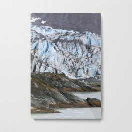 Glacier Bay National Park Alaska Wilderness Metal Print