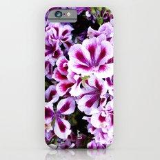 Martha Washington Geranium I iPhone 6s Slim Case