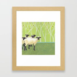 Sheep Crossing Framed Art Print