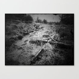 By the Wayside Canvas Print