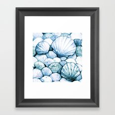 Sea Shells Teal Framed Art Print