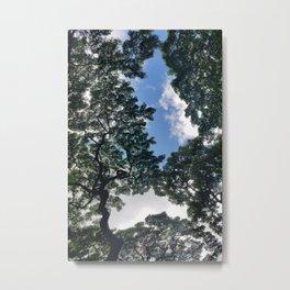Waimea Valley #1 Metal Print