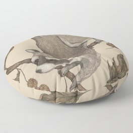 The Raccoon and Sycamore Floor Pillow