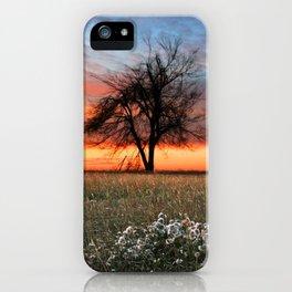 Lonely Tree Sunrise iPhone Case