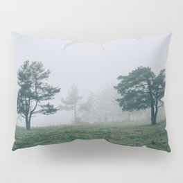 Mystic Forest in Slovenia 04 Pillow Sham