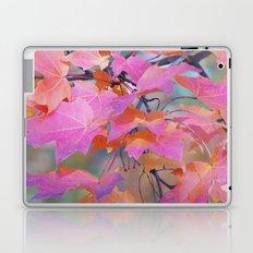 Autumn Rainbow Colors Laptop & iPad Skin