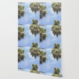 The sun and the palms Wallpaper