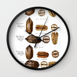 Nuts - Fruit Illustration Wall Clock
