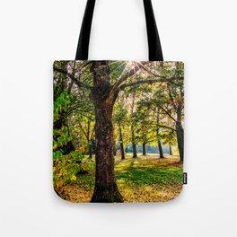 Concept nature : Manuf modus ad lacum Tote Bag
