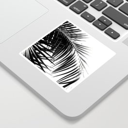 Palm Leaves Black & White Vibes #3 #tropical #decor #art #society6 Sticker