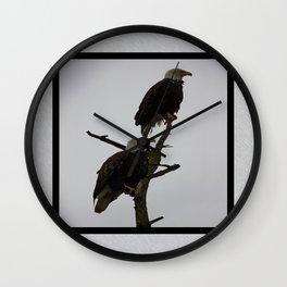 bald eagle pair in the rain (square) Wall Clock