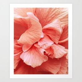 hibiscus II Art Print